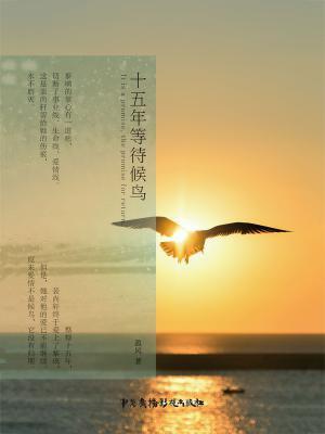 十五年等待候鸟(完美典藏版)[精品]