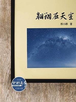 翱翔在天空(中国故事)