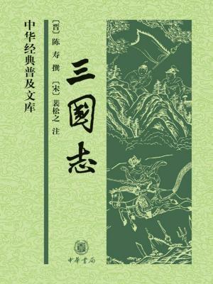 三国志--中华经典普及文库