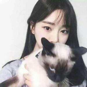 抱猫的女孩