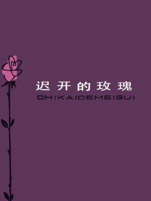 迟开的玫瑰