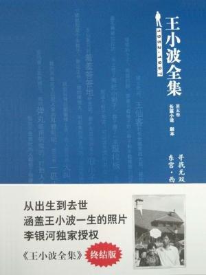 王小波全集(长篇小说·剧本)第五卷:寻找无双·东宫·西宫