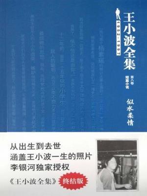 王小波全集(短篇小说)第八卷:似水柔情