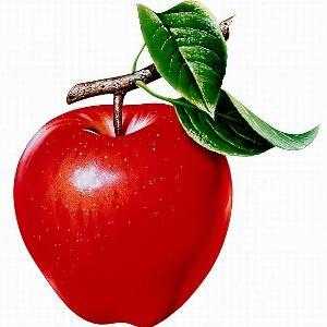漂亮苹果图片大全可爱