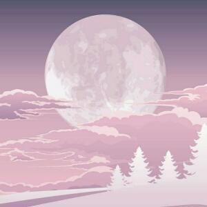 明月几何兮