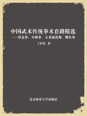 中国武术传统拳术套路精选——形意拳、少林拳、五龙通花炮、鹰爪拳