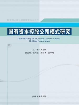 国有资本控股公司模式研究