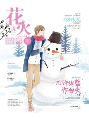 花火20172A[精品]