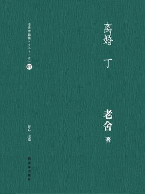 离婚  丁(老舍作品集07)