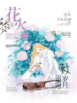 花火20172B[精品]