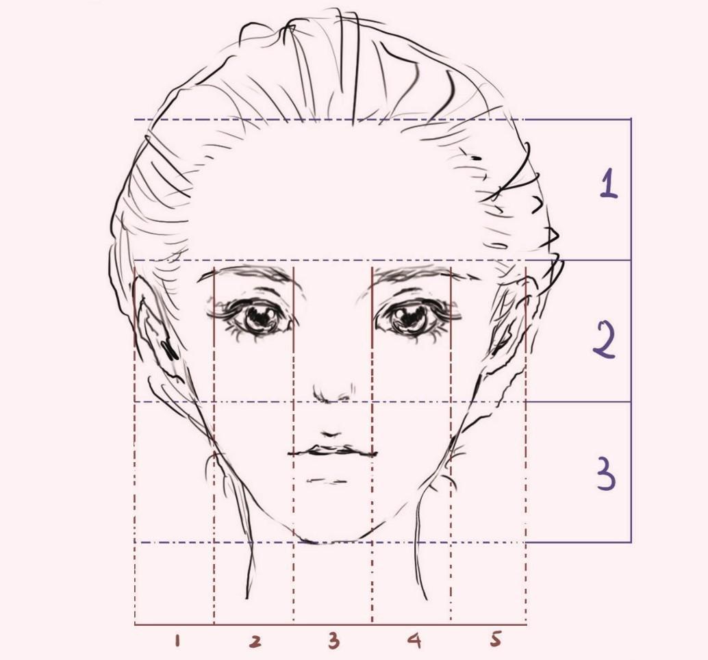 传统的三庭五眼五官位置及比例 只要是随手翻过人体解剖书或接受过基础素描训练的同学应该都听说过经典的三庭五眼法。所谓三庭五眼,是一句简单易懂的确定成人五官位置、比例的口诀。如上图,三庭指纵向三等分:发迹至眉毛;眉毛至鼻底;鼻底至下颏。五眼指横向五等分,两眼中间距离为一眼的宽度;两眼外侧到两鬓的距离分别为一眼。这听似适用于全人类的五官定位法,免不了过于呆板,在实际应用于绘制年轻女性的脸部时,势必需要一定的修正,但仍不失为起草稿的好方法。 下文中我们会详细描述。 (图一)通常,正视角度的人脸