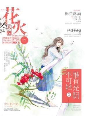 花火20173B[精品]