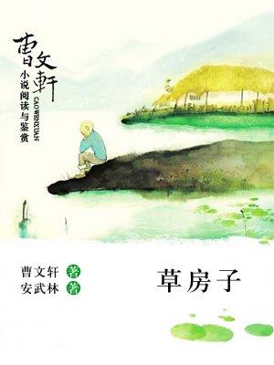 曹文轩小说阅读与鉴赏——草房子
