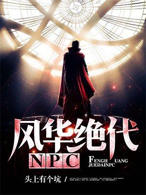 风华绝代NPC