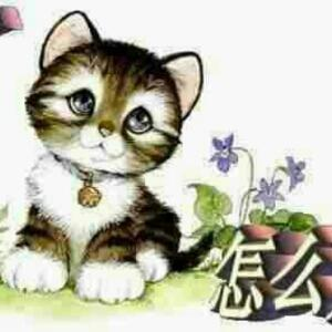 壁纸 动漫 动物 卡通 漫画 猫 猫咪 头像 小猫 桌面 300_300
