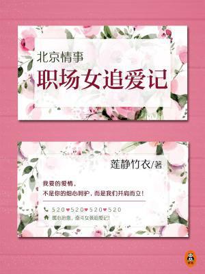 北京情事:职场女追爱记(共2册)