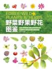 野菜野果野花图鉴