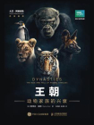 王朝:动物家族的兴衰