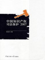 中国知识产权司法保护 2007