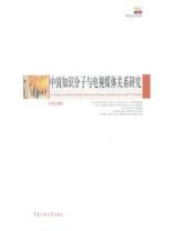 中国知识分子与电视媒体关系研究