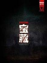 宝藏(谜小说系列)