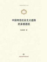 中国特色社会主义道路的多维透视