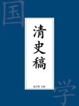 清史稿(缩减版)