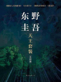 东野圭吾天王套装(共4册)