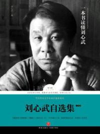 刘心武自选集·小说卷