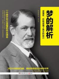 梦的解析:一个终于可以读懂的中文译本