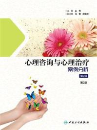 心理咨询与心理治疗案例分析(第2辑)