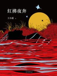 王小波:红拂夜奔