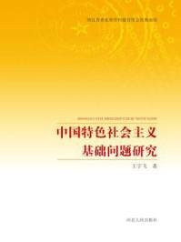 中国特色社会主义基础问题研究