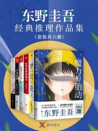 东野圭吾经典推理作品集(套装共六册)