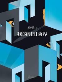 王小波:我的阴阳两界