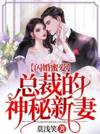 闪婚蜜爱:总裁的神秘新妻