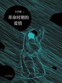 王小波:革命时期的爱情