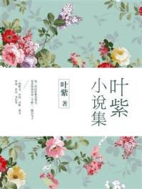叶紫小说集