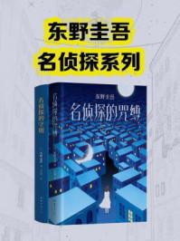 东野圭吾名侦探系列(套装共2册)