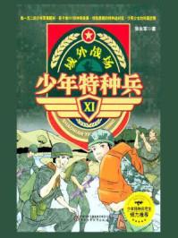 域外战场(少年特种兵XI)