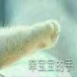 萌meng36