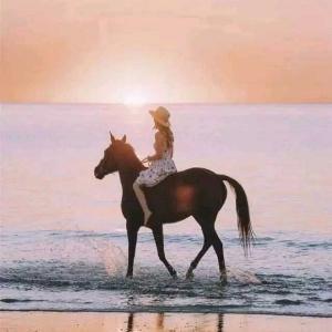 骑马的女孩儿