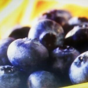 无聊的蓝莓