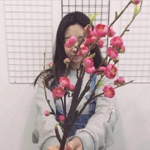 越温柔_y