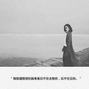 刘beauty