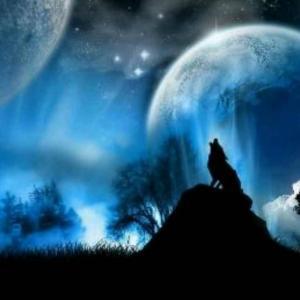 月下幽魂独狼吟