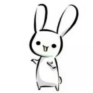 大龙猫的兔子