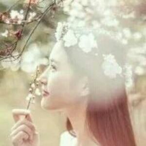 落雪樱花草