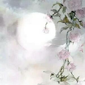 樱花满天飞