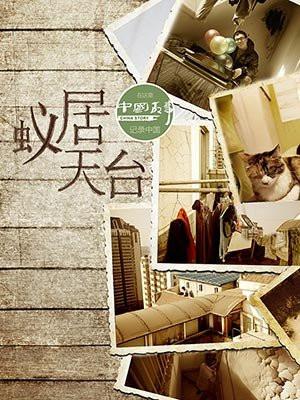 蚁居天台(中国故事)